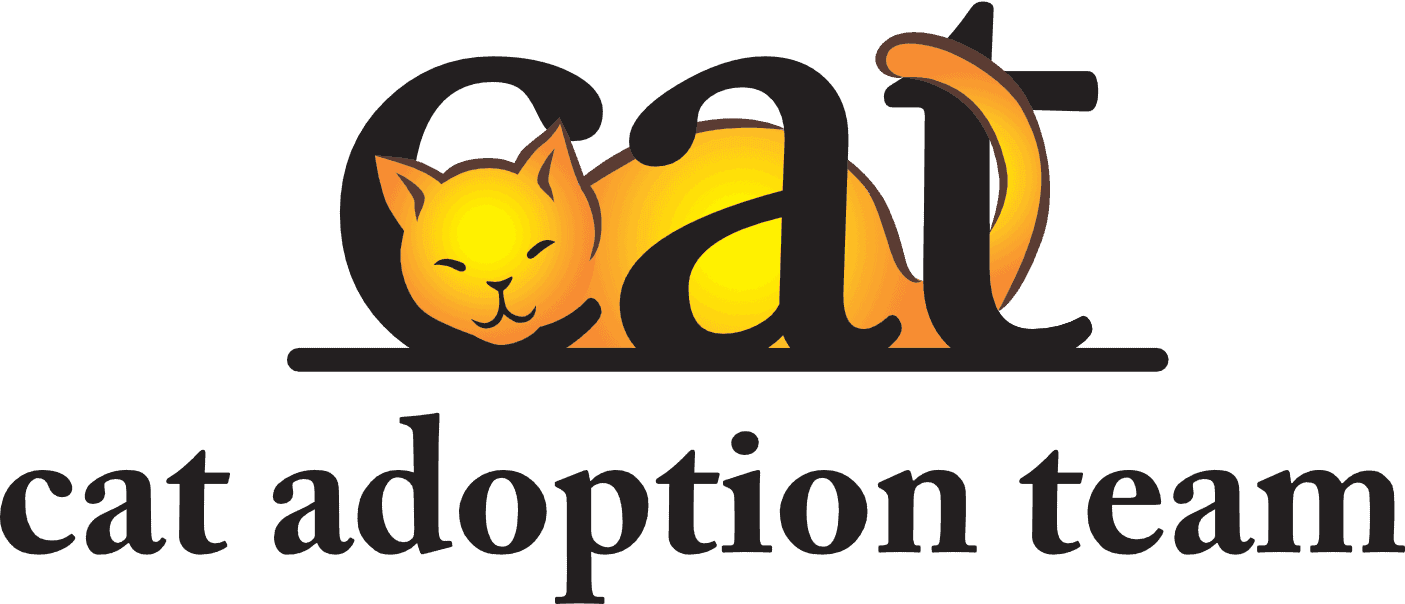How Much Does It Cost To Adopt a Cat | Cat Adoption Fee